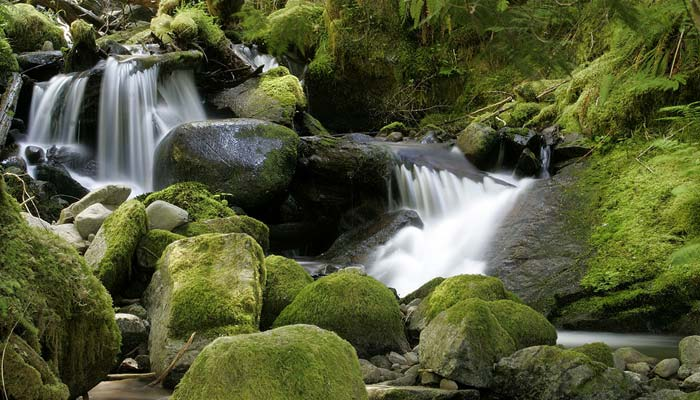 Photo of cascading mountain stream by Andy Long