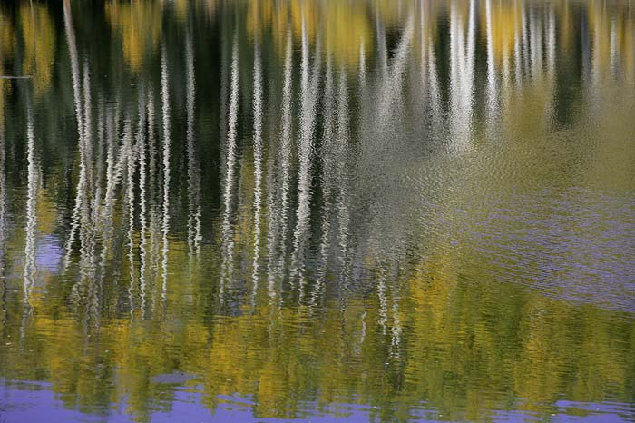 Impressionistic photo of Aspen trees reflecting on Maroon Lake in Aspen, Colorado by Andy Long