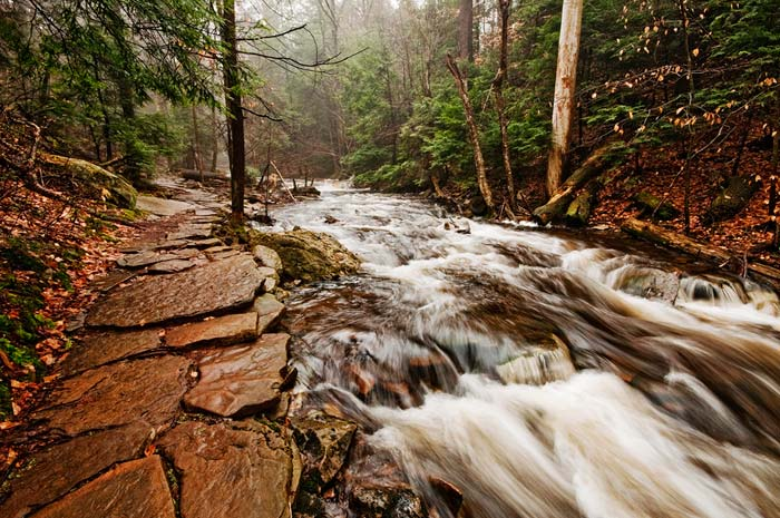 Photo of Mohawk Falls at Ricketts Glenn State Park by Robert Hitchman