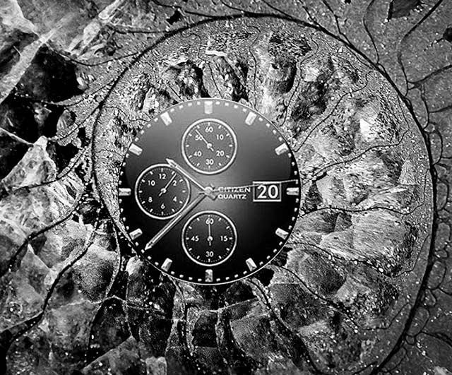 Image of clock inside of a slice of a petrified seashell by Jim Austin.
