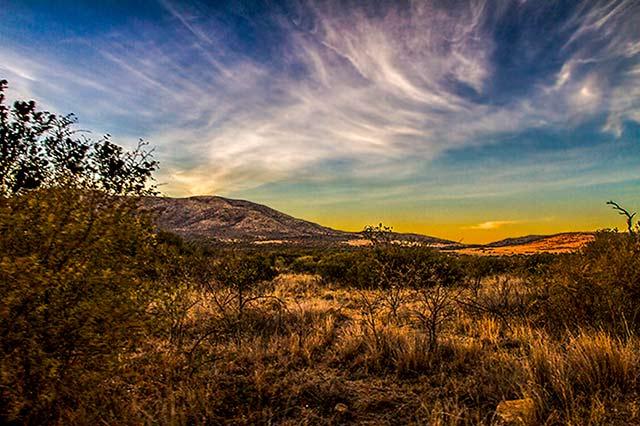 Golden landscape of Pilanesberg National Park in South Africa by Noella Ballenger.