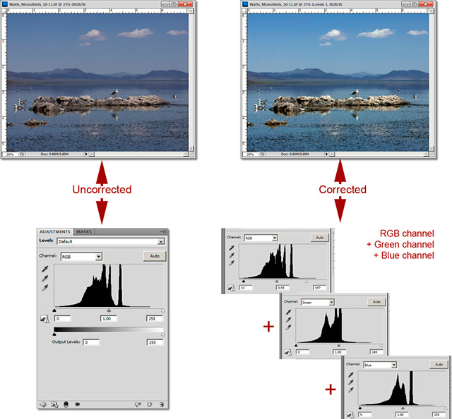 Example of Levels Adjustment Layer in action with image and screen shots of levels and color adjustments by John Watts.