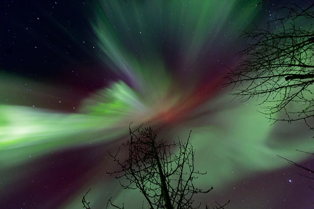 Image of green, red and purple Aurora Borealis and stars by Andy Long.