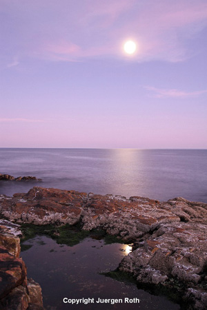 Image of moonrise over a lake at Acadia National Park by Juergen Roth.