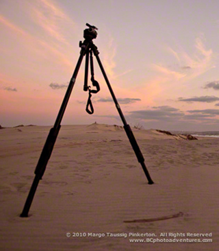 Image of tripod with ball head standing on a beach by Margo Taussig Pinkerton.