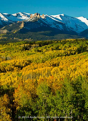 Layers of various colored fall trees create the illusion of stairsteps to the mountains in the background by Andy Long.