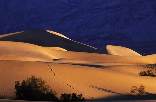 Photo of Death Valley Sand Dunes, California by Noella Ballenger