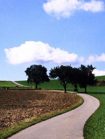 Photo of Farmland Path, Bavaria, Germany by Noella Ballenger