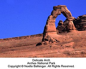 nb_arches.jpg (16643 bytes)