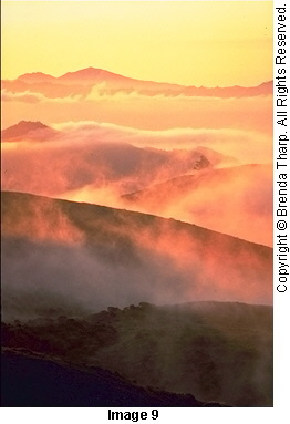 Photo expressions: Light, pure, warm and luminescent, is the strength of this image of fog-shrouded rolling hills by Brenda Tharp.