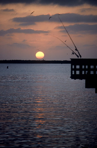 Silhouette photo of fishing pier in Venice by Ron Veto