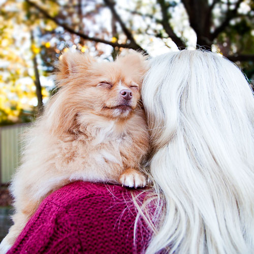 Close-up photo of dog and owner. Dog adopted from DCH Animal Adoptions in Sydney, Australia by Cathy Topping