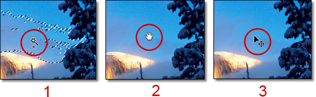 Photoshop CS6 / CC: Examples of cursor, hand tool and move tool by John Watts.