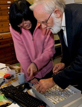Photo of Professor Kees van Achterberg and Chun-dan Hong at Prehistoric Times Museum in Boxtel, Netherlands by Edwin Brosens