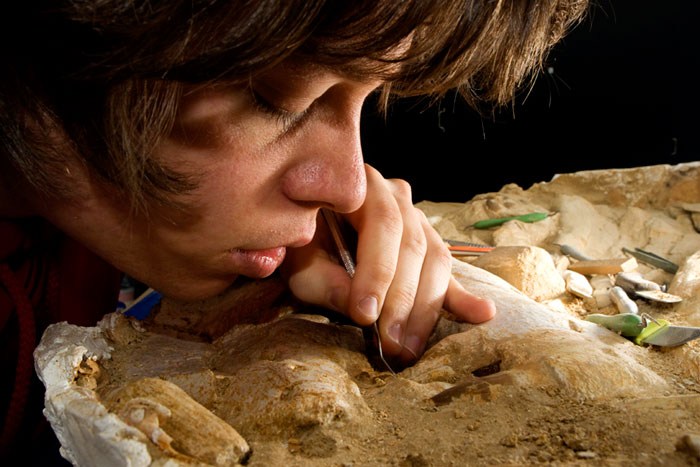 Photo of student Frank van Dorp at Prehistoric Times Museum in Boxtel, Netherlands by Edwin Brosens