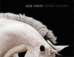 Cover of book Horse/Human: An Emotional Bond