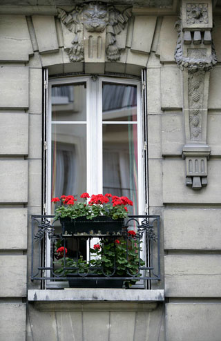 Photo of a window flower box in Paris by Andy Long
