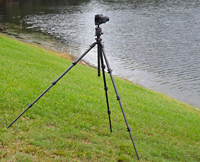 Photo of Manfrotto 4 Section, 055 Carbon Fiber Tripod-Q90 on side of hill by Marla Meier