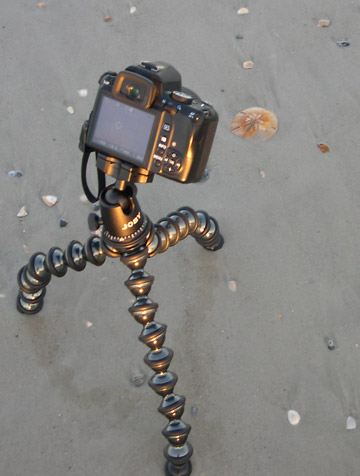 Image of Joby GorillaPod Focus and Ballhead X placed on beach at Jacksonville Beach by Marla Meier.