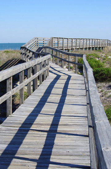Photo of boardwalk at Little Talbot Island, Florida in natural light by Marla Meier
