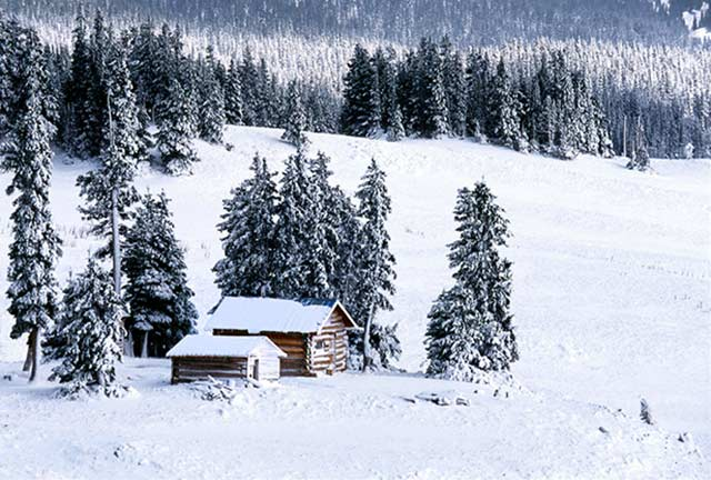 Photo of a log cabin in the snow covered woods by Andy Long.