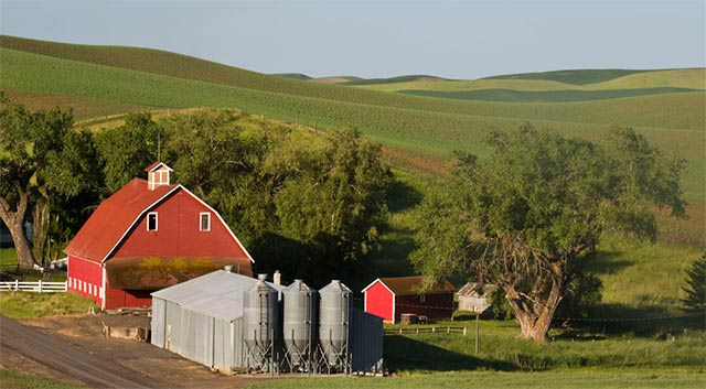 Image of a red barn, trees and rolling hills in Palouse by Andy Long.