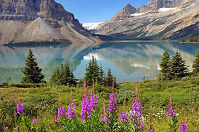 Photographic principles: image of mountains flowers and reflection on a lake by Jim Altengarten.