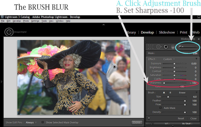 how to fix a blurry photo in lightroom