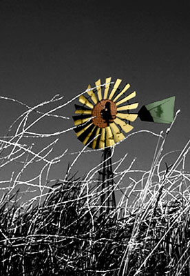Photo of windmill by Noella Ballenger