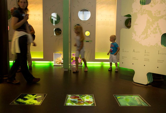 Photo of children at the BiodiverCITY exhibition at the Royal Belgium Natural Science Museum by Edwin Brosens