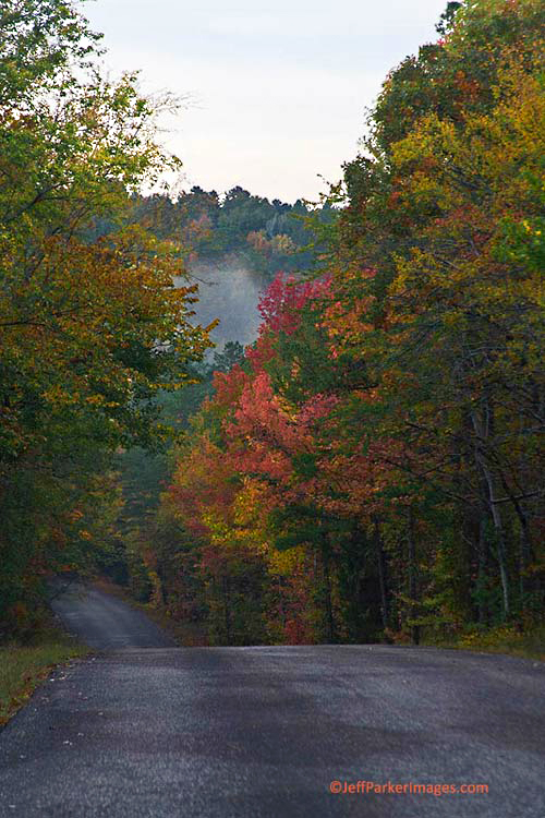 Fall photos: road through trees with yellow, orange and red by Jeff Parker.