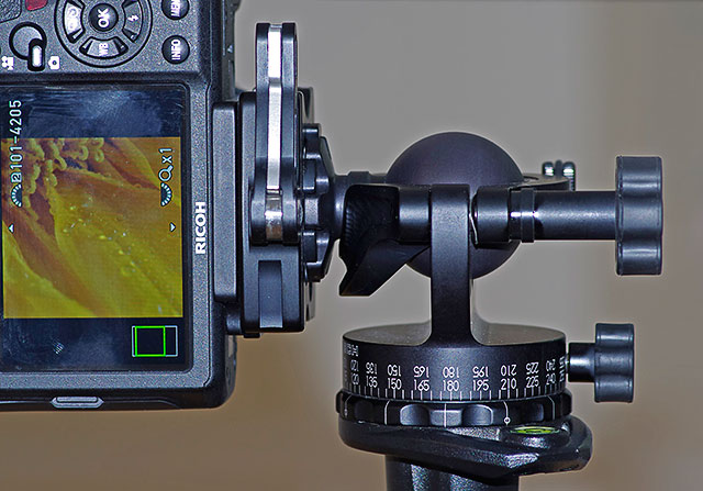 Camera on the Acratech GP Ball head in the vertical position by Marla Meier.