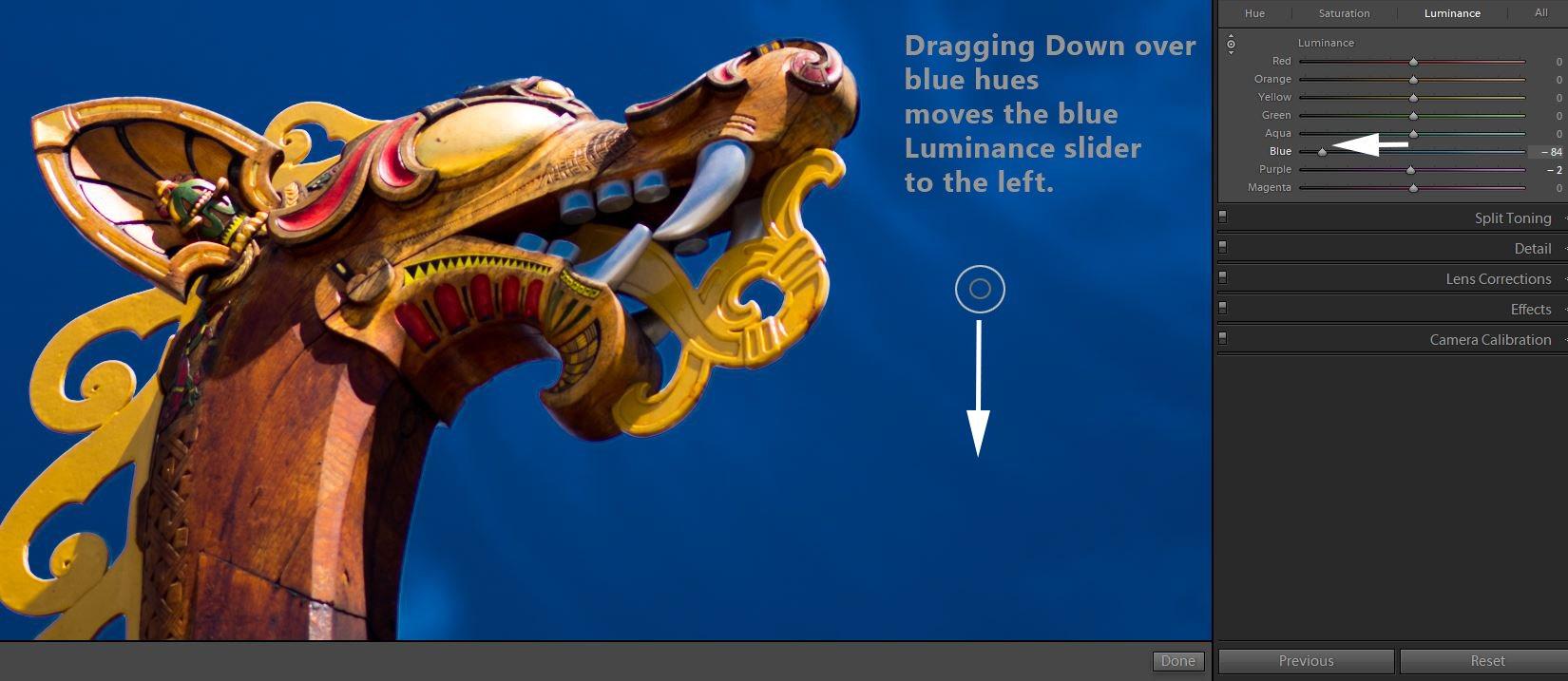 Blue Luminance Change Dragon Jimagesdotcom