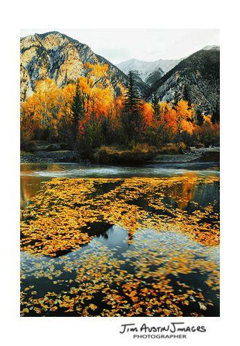 Fall Colorado Clark river blog