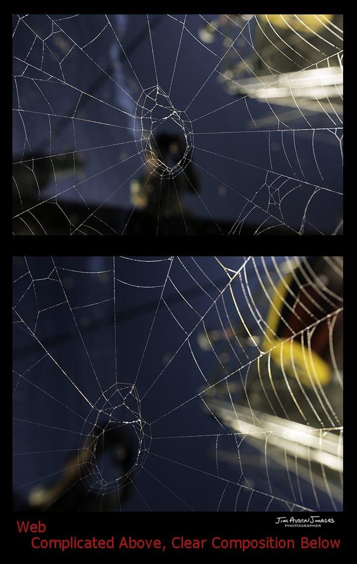 Spider Web Complicated Clear Jim Austin Jimagesdotcom