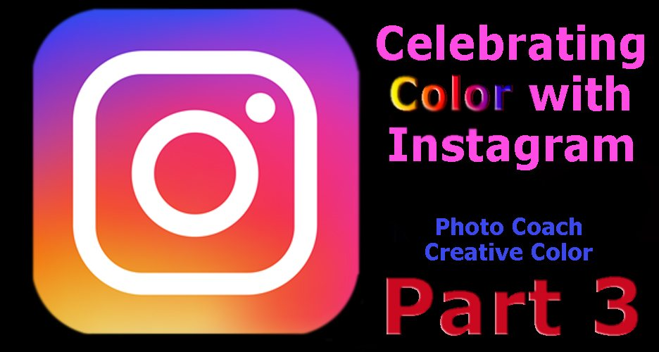 Celebrating Color with Instagram