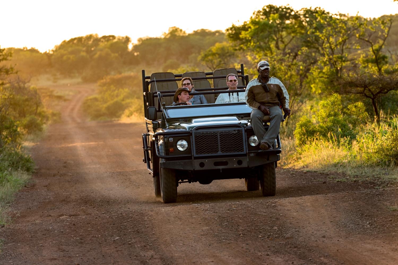 Safari Jeep in the Bush