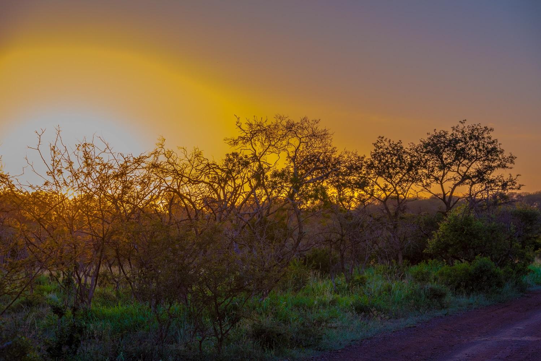 Setting African Sun