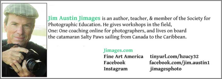 Bio-Jim-Austin-JImages-2018-Apogee