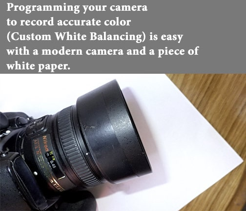 set white balance