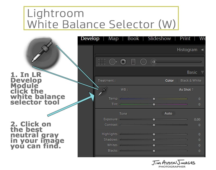 Lightroom white balance