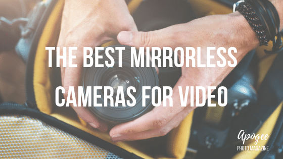 The Best Mirrorless Camera for Video in 2019 | Apogee Photo Magazine