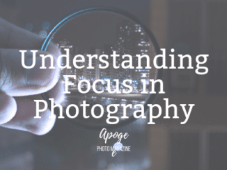 understanding focus in photography