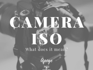 camera iso meaning